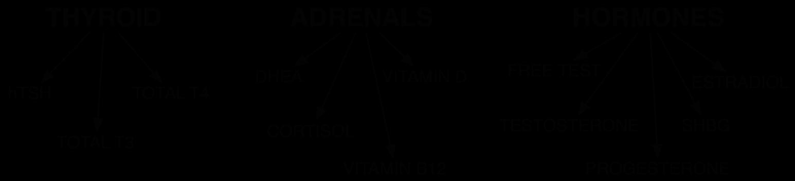 Hormone Image